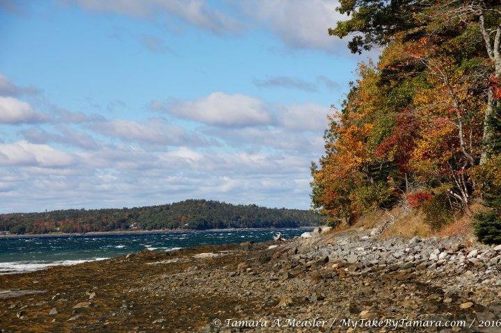 barharbor_10-10-11-16-11-of-16